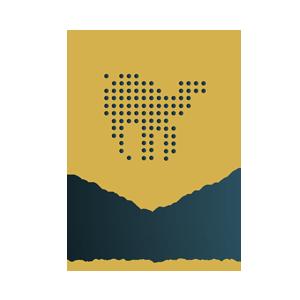 المركز الدولي للتحكيم والوساطة فى منازعات الإبل