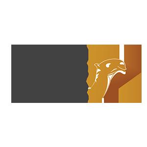 المركز الدولي لإعلام الإبل